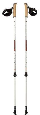 Ferrino - Migliori bastoncini da nordic walking per struttura di qualità superiore