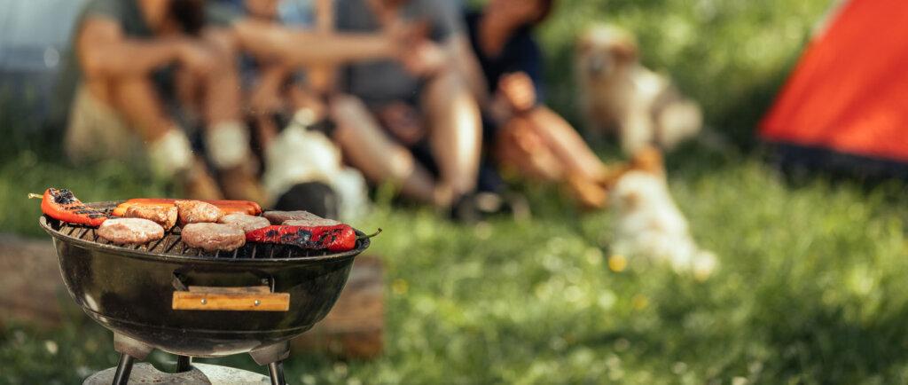 Guida alla scelta di un barbecue senza fumo