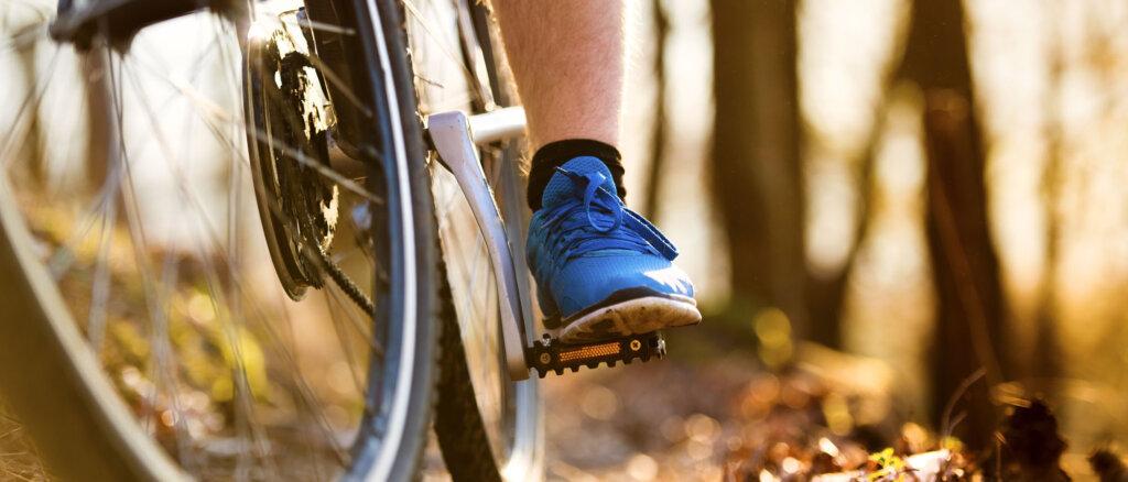 Migliori borse bici